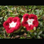 flowers.jpg.w180h180
